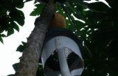 Zware Papaya Picker