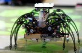 Terra Spider: Autonome sanering Robot
