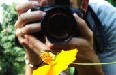 Fotografie-de gids voor grote foto's