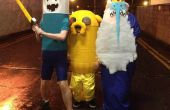 Adventure Time kostuums
