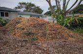 Zuid-Florida bodem gebouw met Mulch