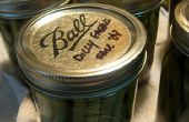 Canning Dilly Green Bean Pickles