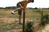 Hoe om te springen Over een hek