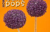 Hoe maak je Cake Pops stapsgewijze