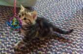 De Sparkle bal - voor katten