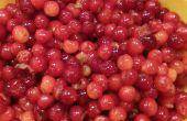 Zelfgemaakte Cherry Jam: Van boom tot Jar