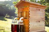 Meten van lichte uren van de dag - externe Bijenkorf Project