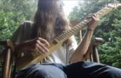 13 dollar gitaar