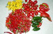 Behoud van pepers: Jam, vlokken, poeder