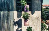 5l bier keg planter - verticale tuin UPGRADE -