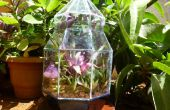 Stained Glass Terrarium: Een weekend Project