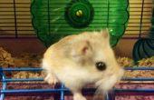 De houwer van de hamster: Zwijgen het lawaaierige wiel - met Recycling!