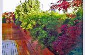 Tuin op het dak ontwerp: Ohm Sweet Ohm
