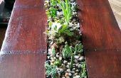 Plank naar succulente koffietafel conversie.