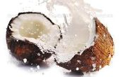 Een hele kokos consumeren: 9 producten - nul afval!