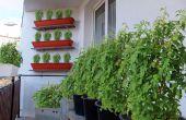 Starten van een balkon tuin