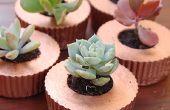 Cupcake betonnen plantenbakken