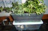 Aardige ruikende hybride binnen compostbak en Planter