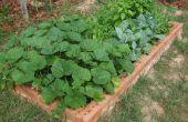 Duurzaam aan de orde gesteld Tuin bedden