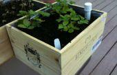 Wijn doos wicking planter dozen