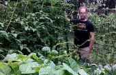 Verticaal tuinieren Trelly voor tomaten of squash