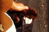 Lederen handschoenen met een Touch van bont