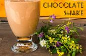 Gemakkelijk rijke chocolade shake (melkerij gratis!)