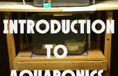 Inleiding tot Aquaponics