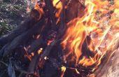 Een succesvolle brand