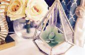 DIY succulente Terrarium huis gemaakte Luxe abonnement vak