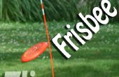 FRISBEE FLIPPERS