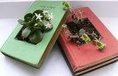 Gerecycled boek plantenbakken