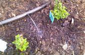 Water uw tuin met grijs Wasserij Water
