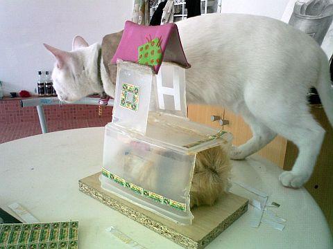 Hamster & cavia de slaapkamer (kasteel redelijk) / Stap 4: make-up ...